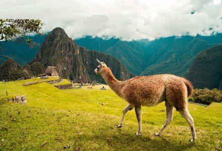 Voyage: destination le Pérou